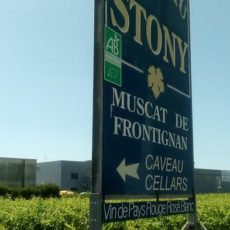 Soutenez notre premier projet – une mini centrale photovoltaïque chez un viticulteur Bio de Frontignan